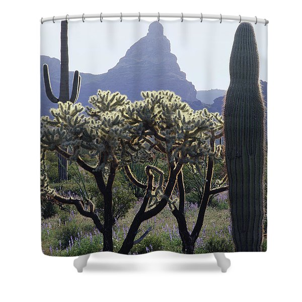 313737 Montezumas Head Shower Curtain