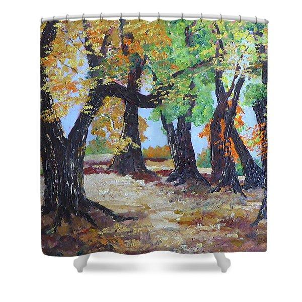 #35 Cottonwood Colors Shower Curtain