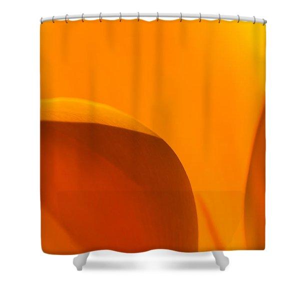 Californian Poppies Shower Curtain
