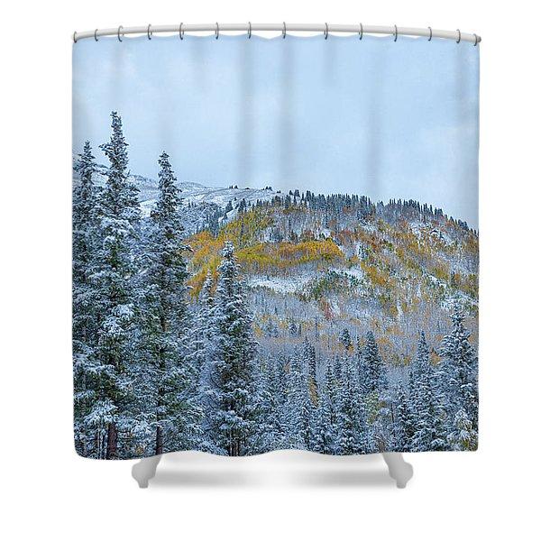 Colorado Fall Foliage 2 Shower Curtain