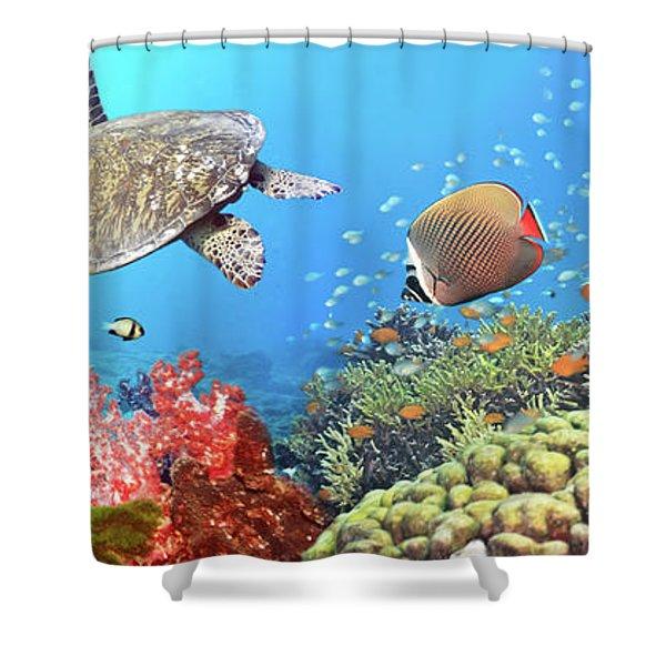 Underwater Panorama Shower Curtain