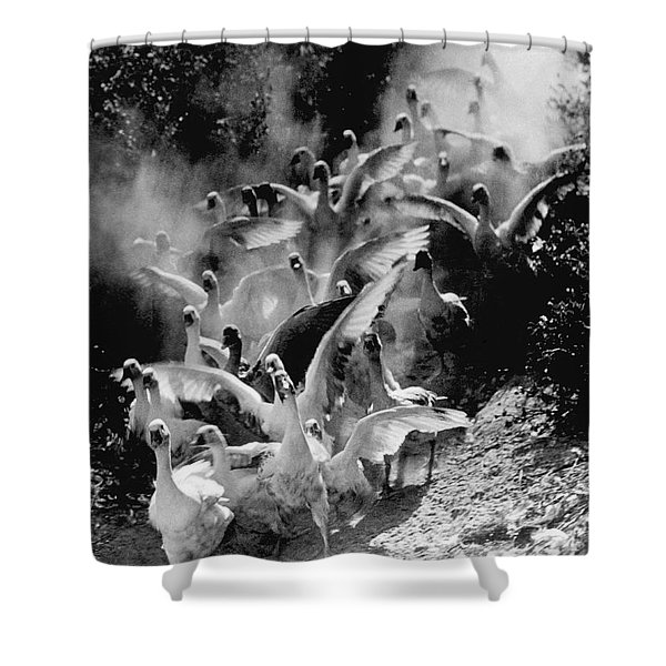 The Geese Flock Shower Curtain
