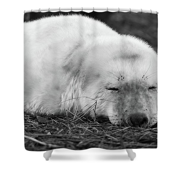 40 Winks Shower Curtain