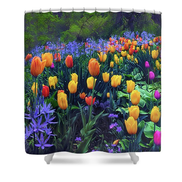 Procession Of Tulips Shower Curtain