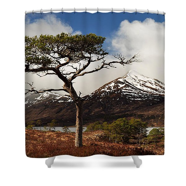 Glen Affric Shower Curtain