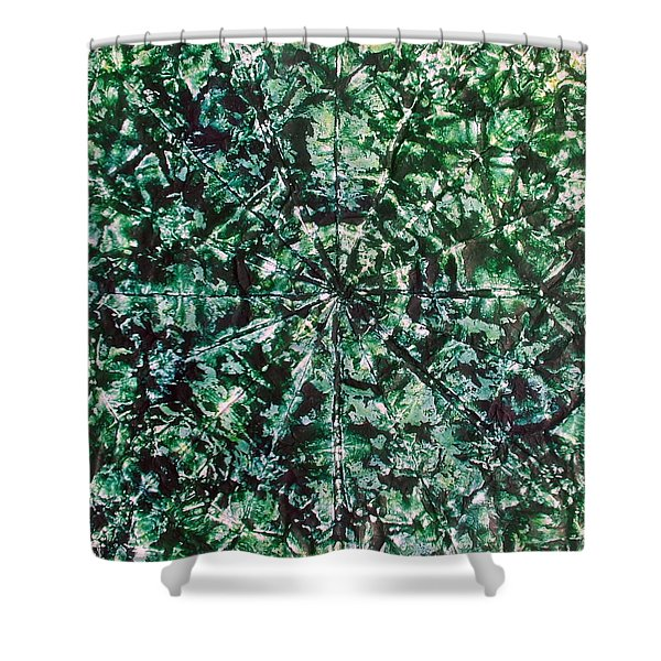 59-offspring While I Was On The Path To Perfection 59 Shower Curtain