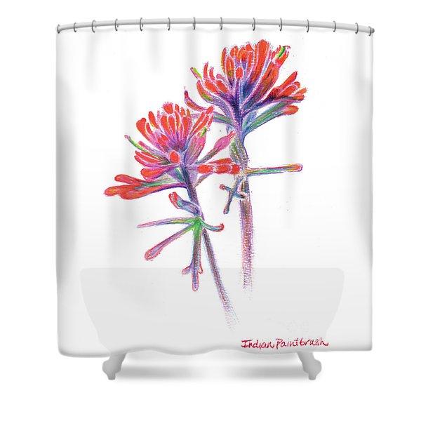 5x7paintbrush Shower Curtain