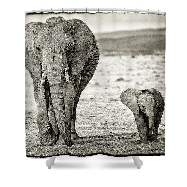 African Elephant In The Masai Mara Shower Curtain