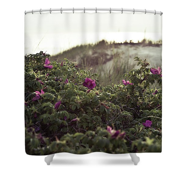 Rose Bush And Dunes Shower Curtain