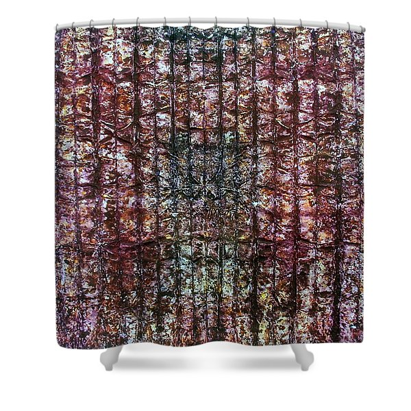 63-offspring While I Was On The Path To Perfection 63 Shower Curtain