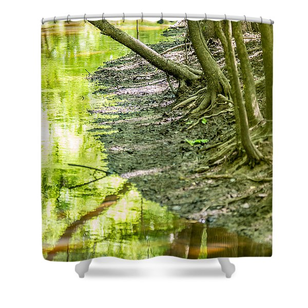 Shower Curtain featuring the photograph cypress forest and swamp of Congaree National Park in South Caro by Alex Grichenko
