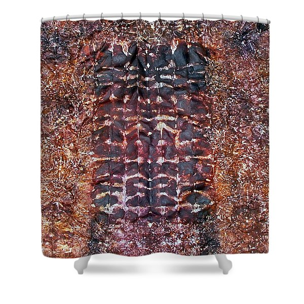 73-offspring While I Was On The Path To Perfection 73 Shower Curtain