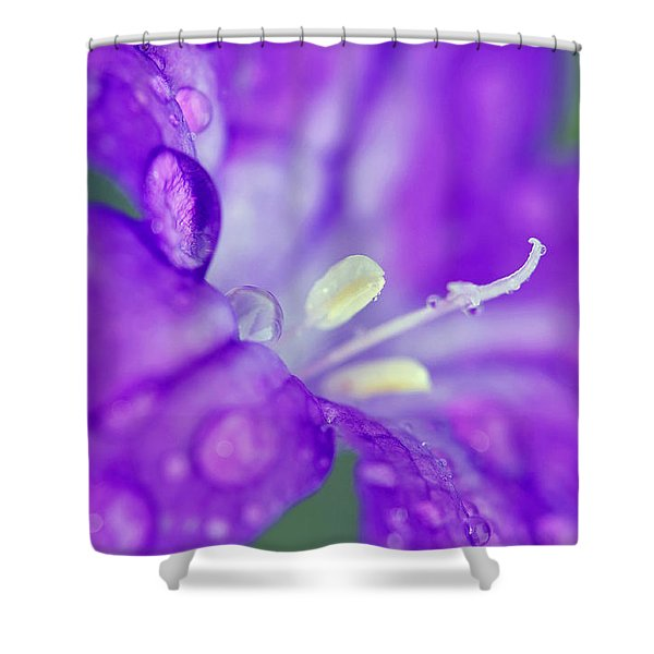 746 Shower Curtain