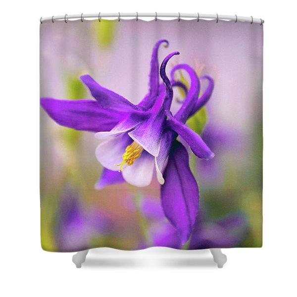 Spring Magic Columbine Shower Curtain