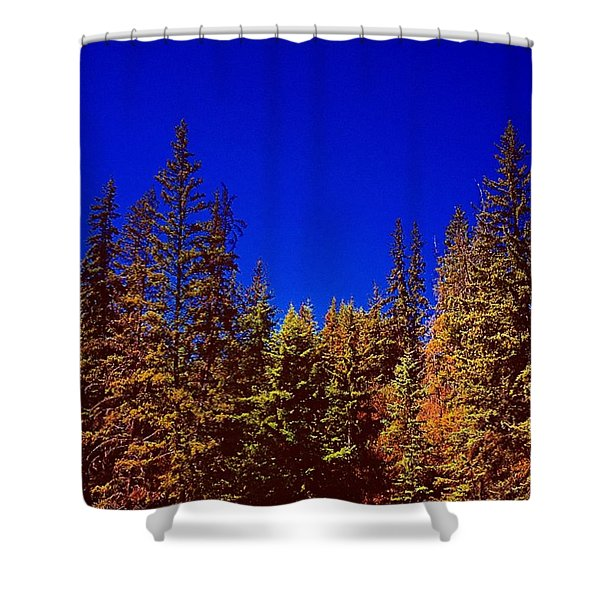 Beyond The Big Green Forest Shower Curtain
