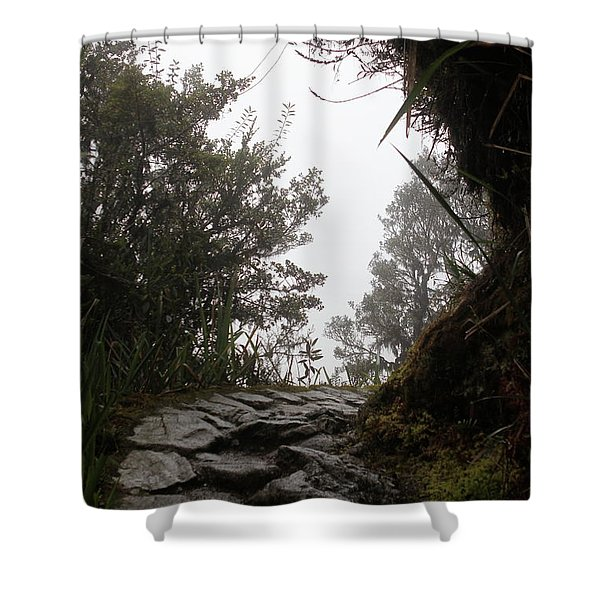 A Bend In The Path Shower Curtain