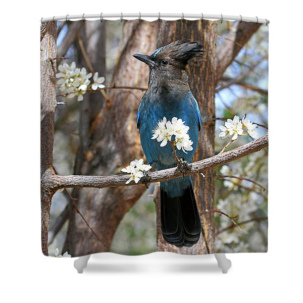 A Bouquet For You Shower Curtain