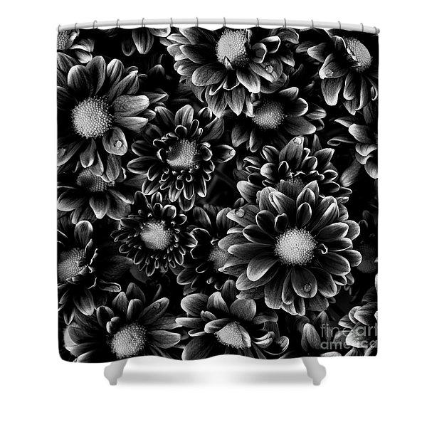 A Bouquet  Shower Curtain