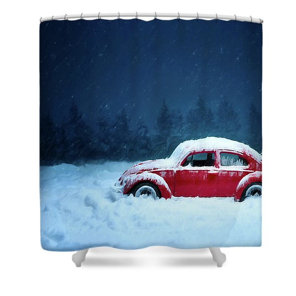 A Bug In The Snow Shower Curtain