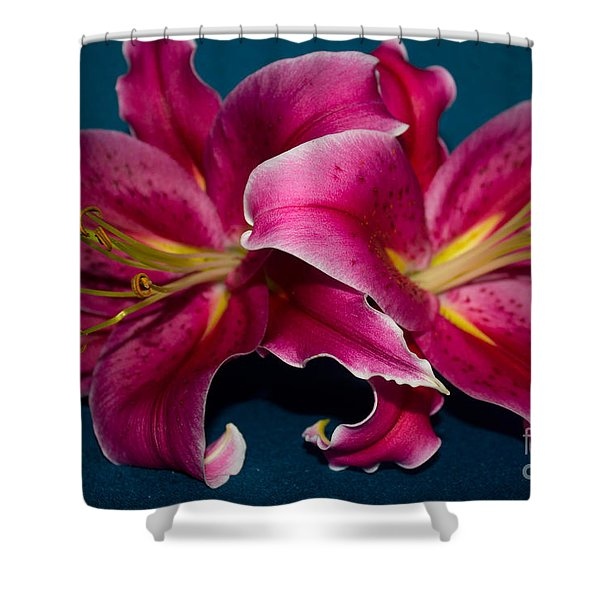 A Bunch Of Beauty Floral Shower Curtain