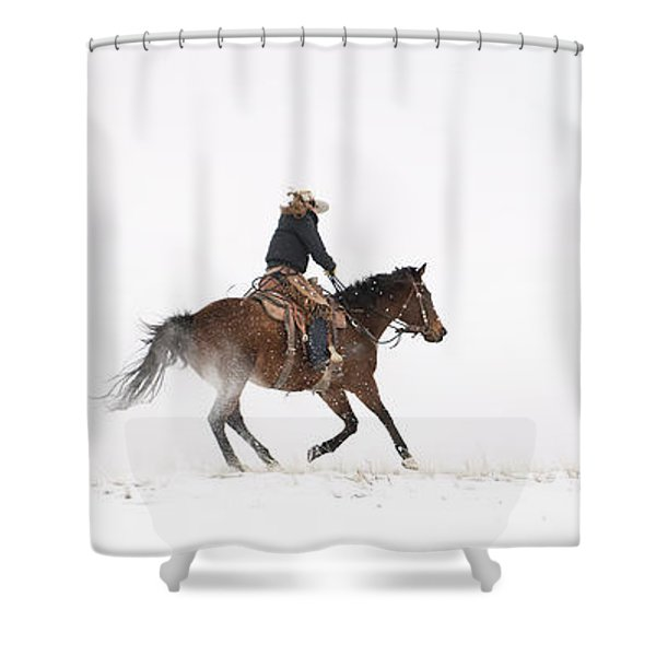 A Chilly Ride Shower Curtain