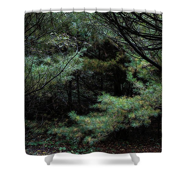 A Clearing In The Wild Shower Curtain
