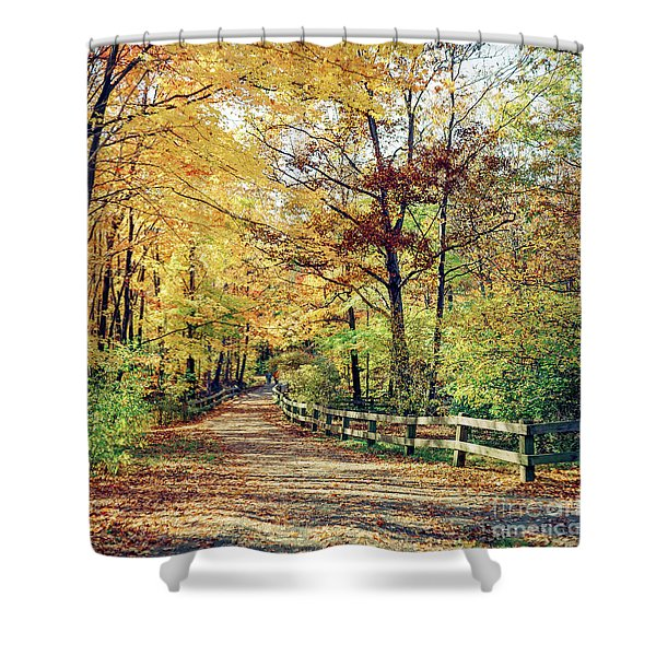 A Colorful Walk Shower Curtain