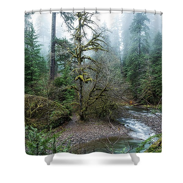 A Creek Runs Through It Shower Curtain