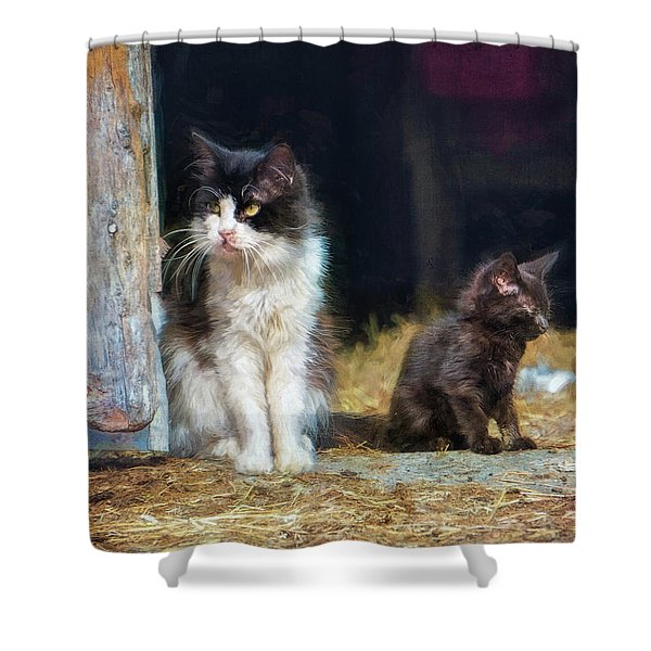 A Day In The Life Of A Barn Cat Shower Curtain