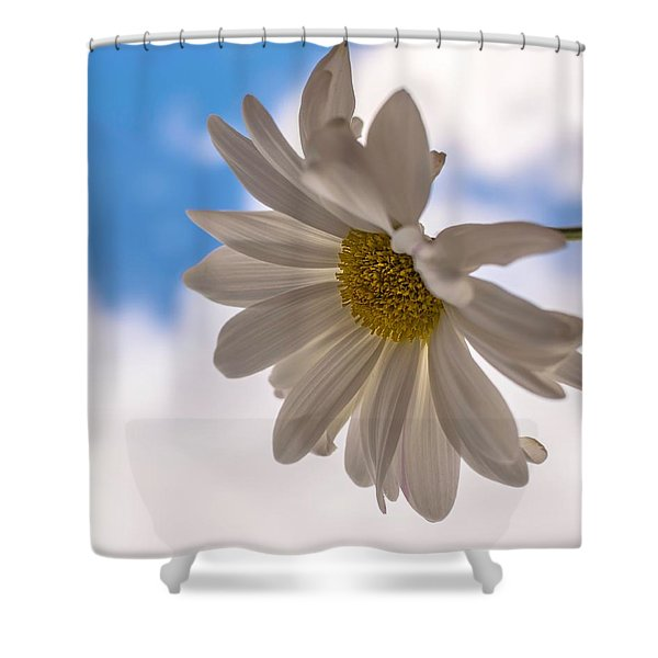 A Different Daisy Shower Curtain