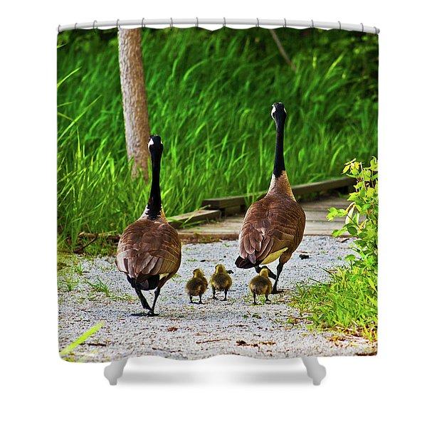 A Family Stroll Shower Curtain