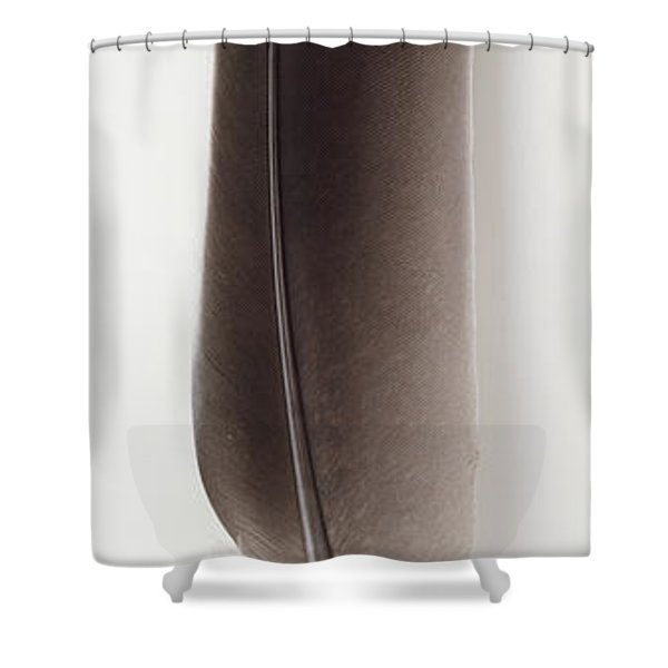 A Feather Shower Curtain