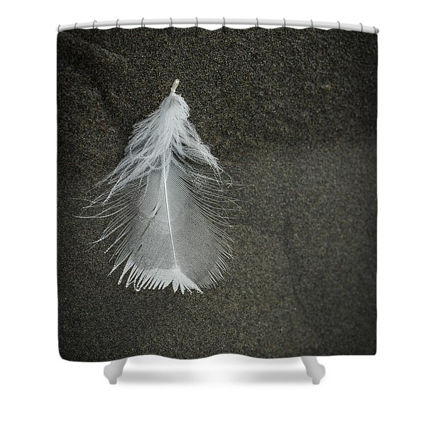 A Feather At The Edge Of The Water Shower Curtain
