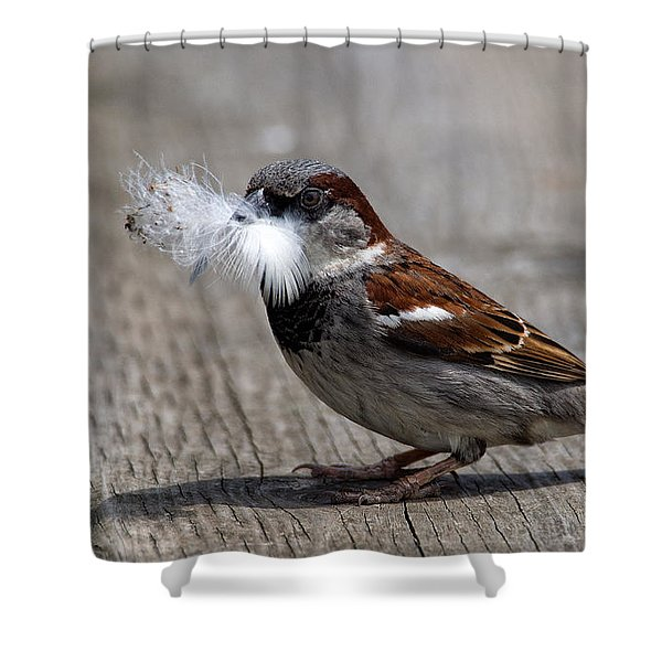 A Feather For The Nest Shower Curtain