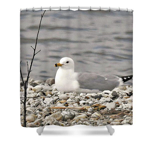 A Few Moments Of Peace Shower Curtain