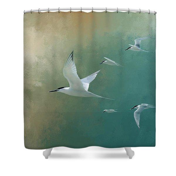 A Flight Of Terns Shower Curtain