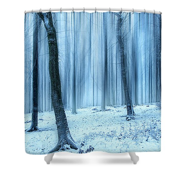 A Forest In Winter Shower Curtain