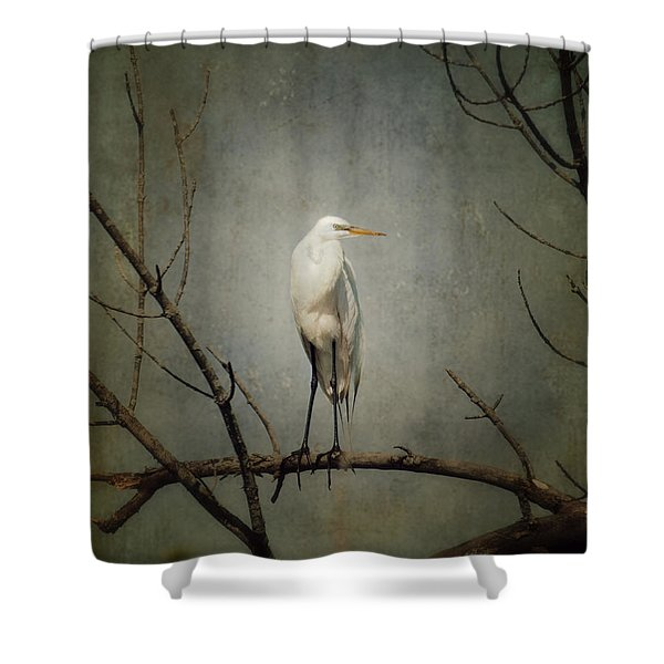 A Great Egret Shower Curtain