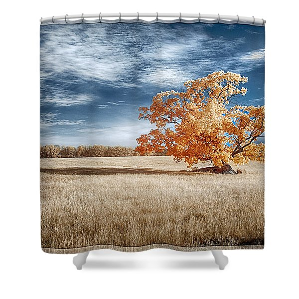 A Lone Tree Shower Curtain