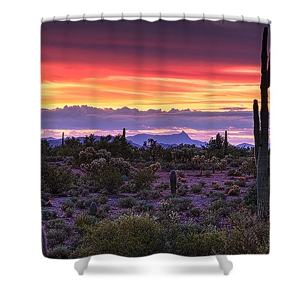 A Magical Desert Morning  Shower Curtain