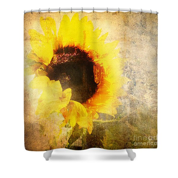 A Memory Of Summer Shower Curtain