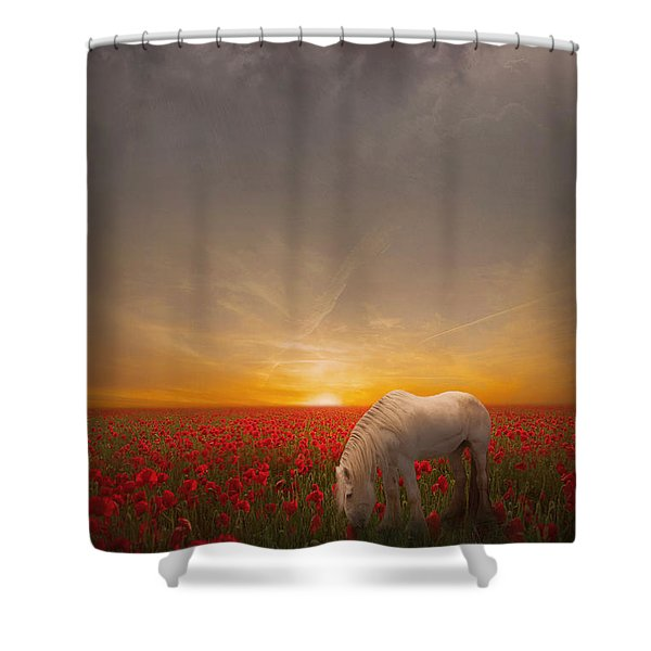 A Moment In The Poppy Field Shower Curtain