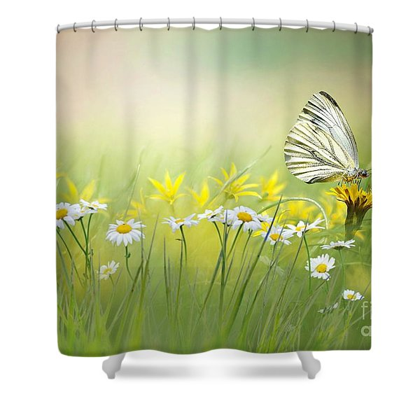Light Wings Shower Curtain