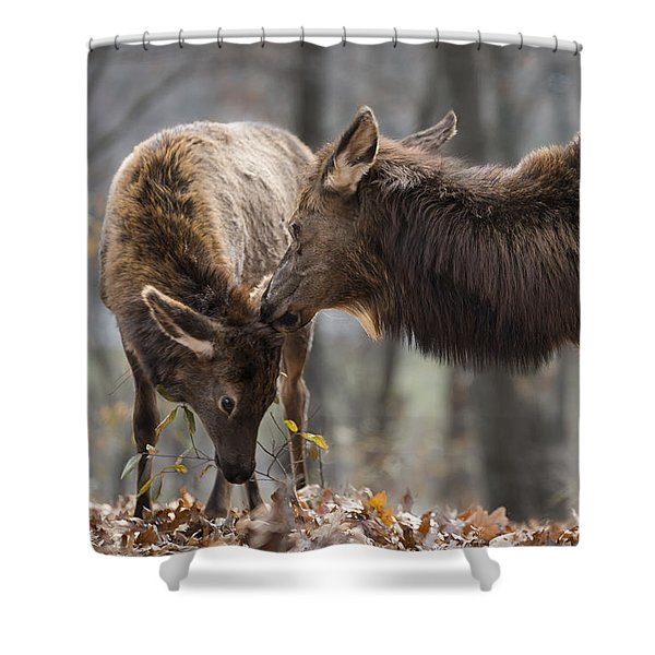 Shower Curtain featuring the photograph A Mother's Love by Andrea Silies