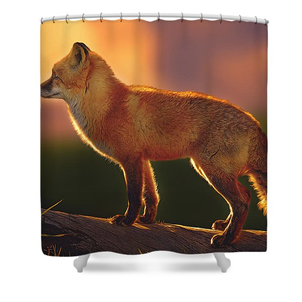 A New Day Dawning  Shower Curtain