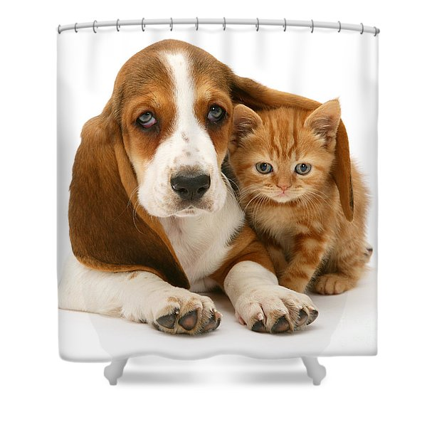 A New Meaning To Cat Flap Shower Curtain