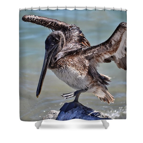 A Pelican Practising A Karate Kick Like Daniel In The Karate Kid Shower Curtain