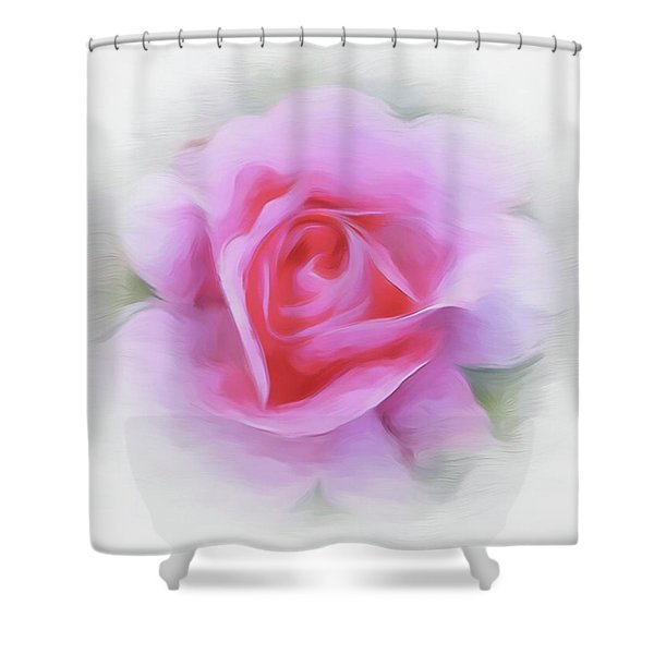 A Perfect Pink Rose Shower Curtain