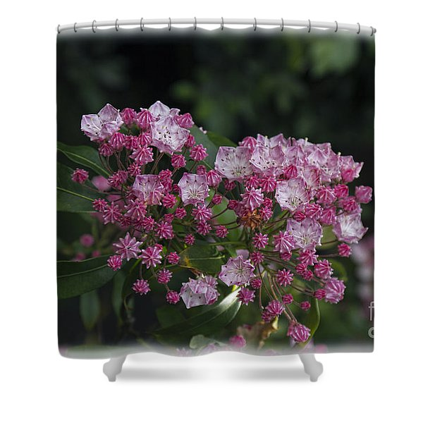 A Pink Bunch Shower Curtain