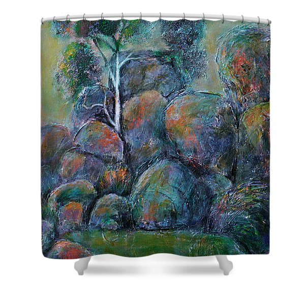 A Place Without Time Shower Curtain